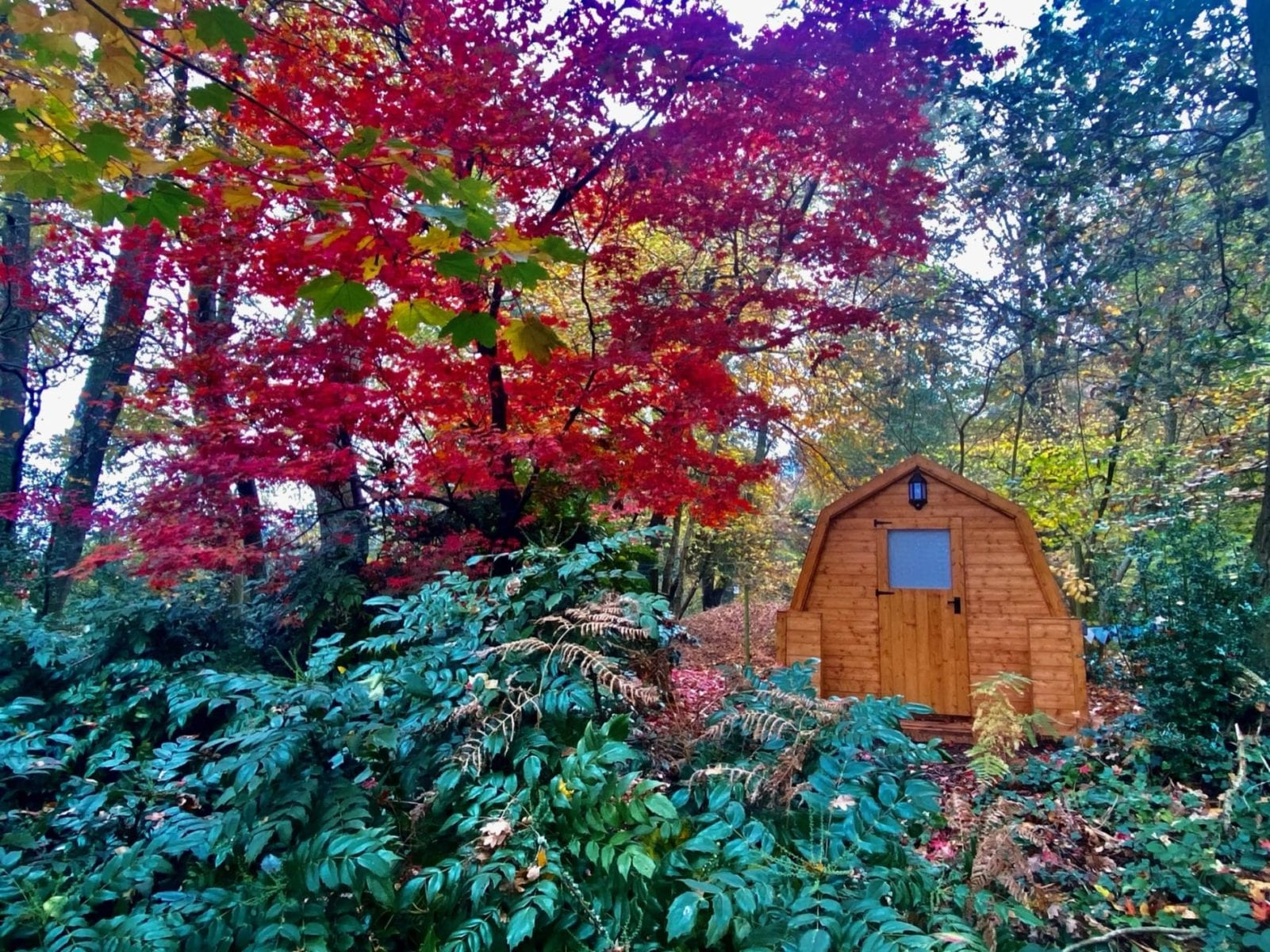 Riverside Lodge, Glamping Pod exterior